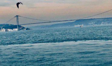 Chasing Bosphorus